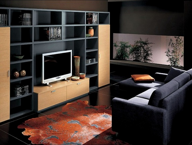 Small tv room ideas with good lighting design for Very small living room designs with tv