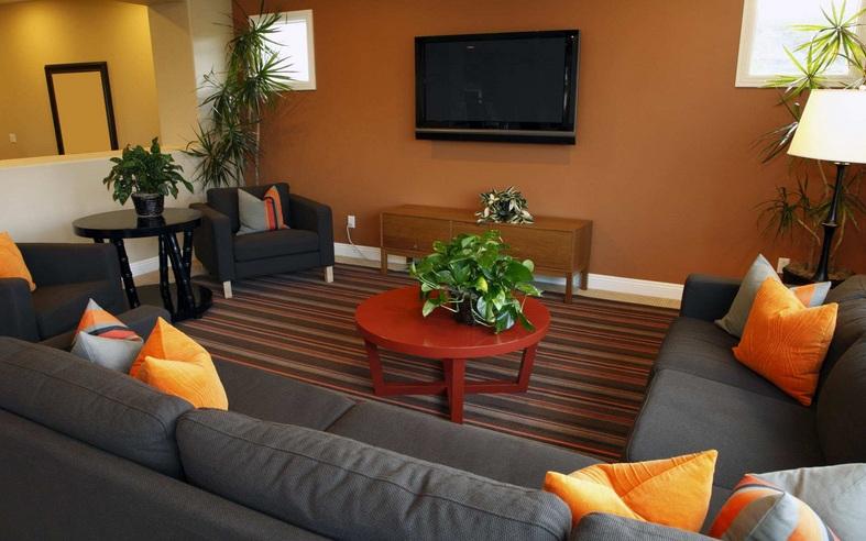 Well Arrangement Small Tv Room Furniture Ideas Decolover Net