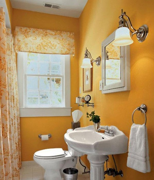 Guest Bathroom Decor Ideas With Matching Shower And Window Curtains